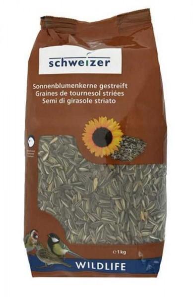 Sonnenblumen-Kerne gestreift