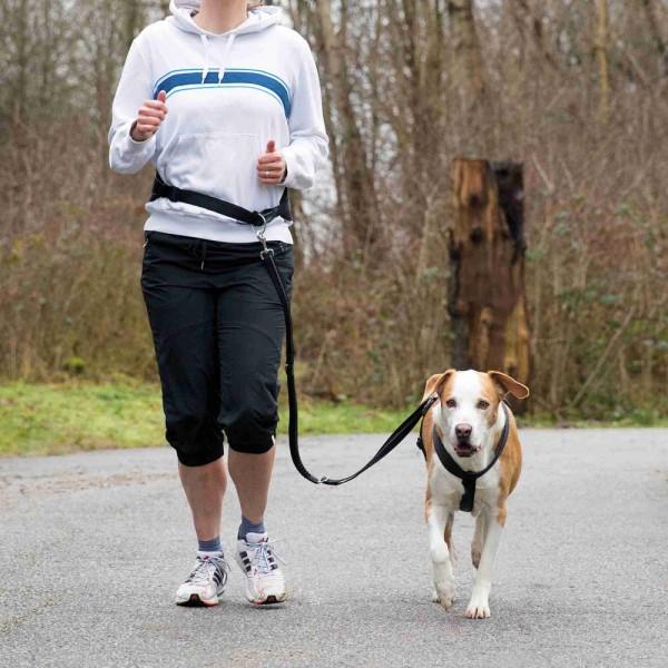 Joggingleine mit Bauchgurt