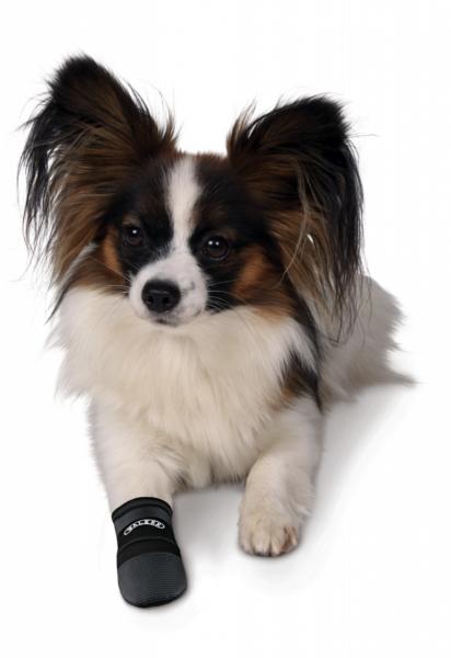 Pfotenschutz Schuhe