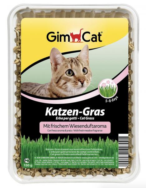 Katzengras mit Wiesenduft 150gr.
