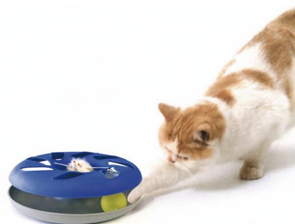 Catsy Roundable